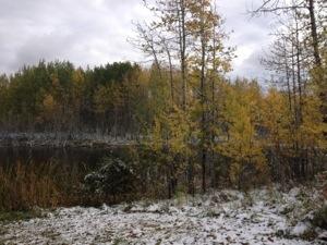 20121003-133729.jpg