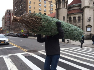 Taking it home, NYC style!